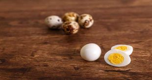 مضرات و خواص تخم بلدرچین برای کودکان