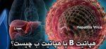 هپاتیت B یا هپاتیت ب چیست؟+ پیشگیری و درمان هپاتیت ب ( hepatitis B )